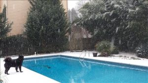 Another Metro Atlanta Pool in the Snow Storm 2014