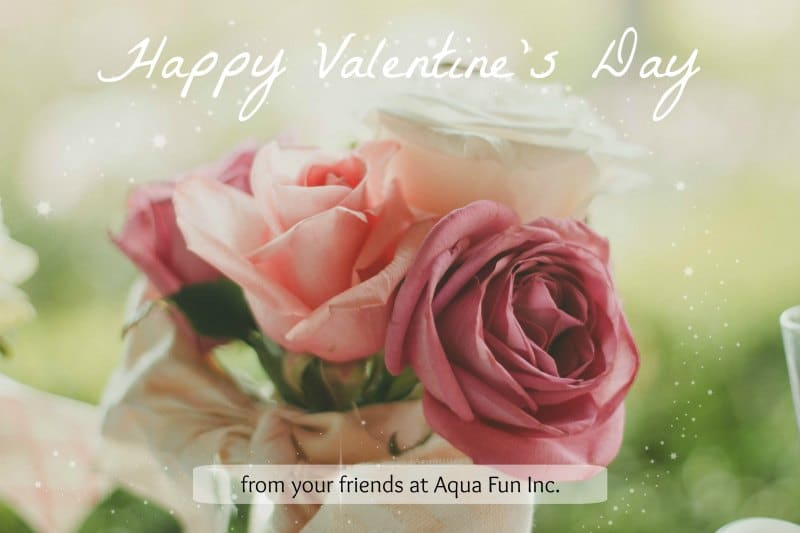 Aqua Fun Inc. Valentines Day